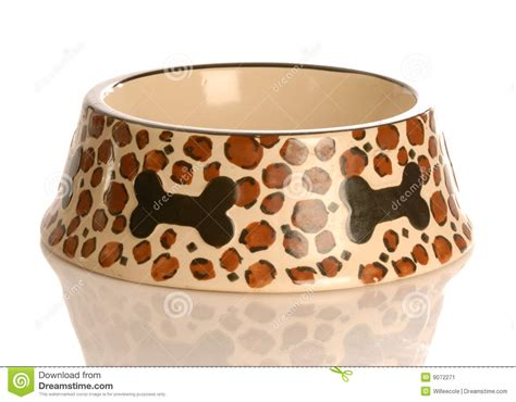 puppy food bowl empty food bowl stock image image of shape 9072271