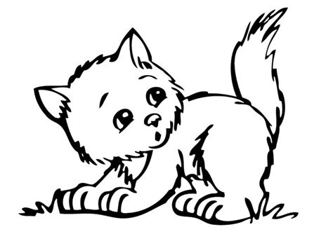 Coloring Page Kitten by Top 10 Lovely Kitten Coloring Sheets For