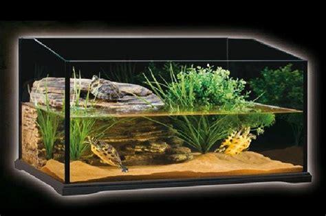 ghiaia per acquario acqua dolce acquario per tartarughe d acqua dolce fai da te lettera43 it