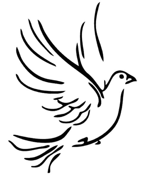 peace dove clipart line drawing pencil and in color