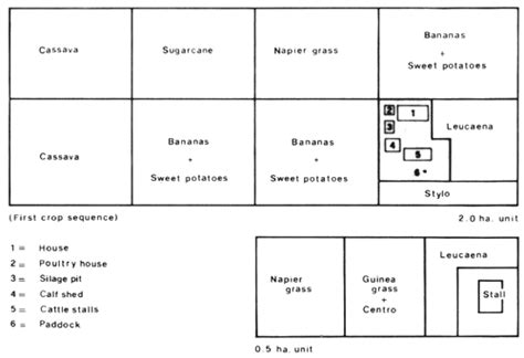 farm layout meaning goat farm layout design