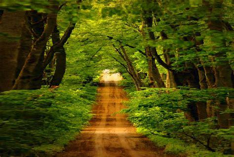 imagenes bidimensionales naturales fondos de pantalla imagenes paisajes wallpapers fondos