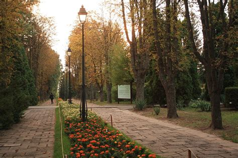 Botanical Garden Wiki Iași Botanical Garden