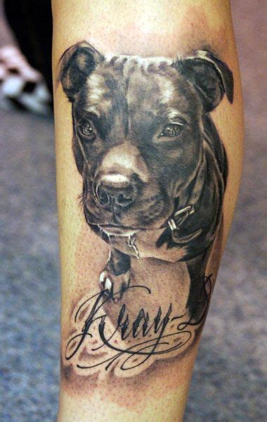 pitbull tattoos 20 best pit bull designs inside dogs world