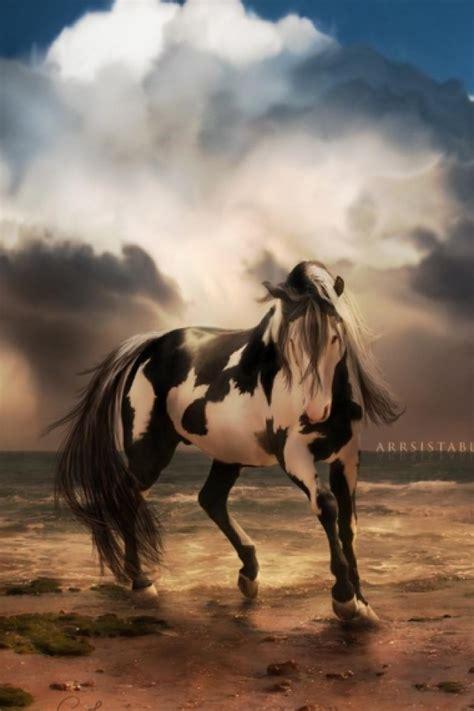 wallpaper iphone 6 horse horse wallpaper for iphone wallpapersafari