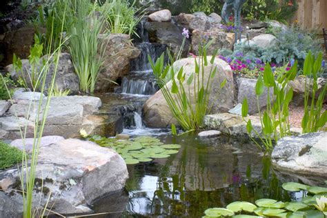 aquascape pond aquascape your landscape small ponds pack a punch