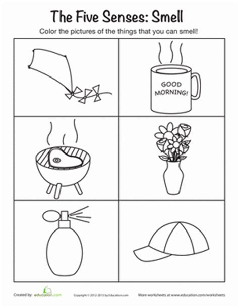 coloring pages five senses preschool the five senses smelling worksheet education com