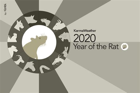 new year year of the rat 2014 new year 2018 2019 time date holidays