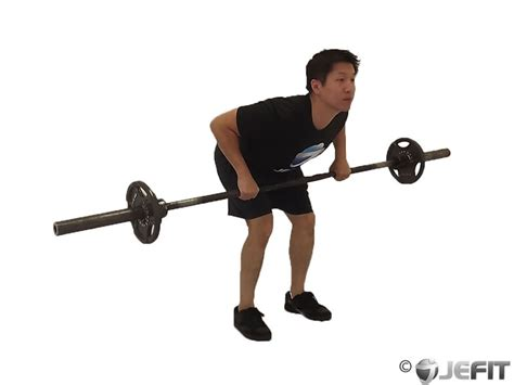 bench over row barbell bent over row exercise database jefit best