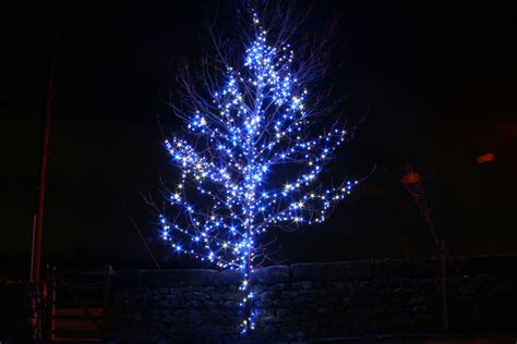 blue lights on tree 28 images blue led lights how to