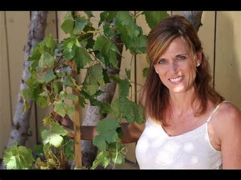 Easy DIY Grapevine Trellis #1   YouTube