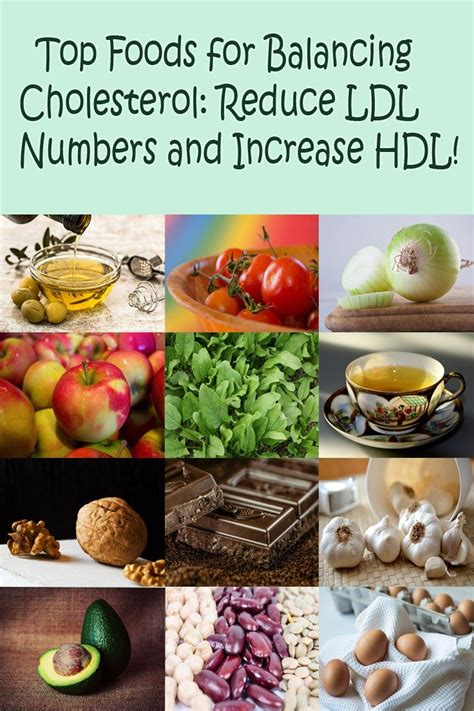 diet to lower cholesterol and triglyceride cholesterol balancing foods the best foods for lowering