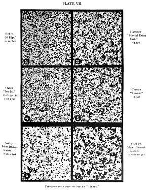 film grain wikipedia