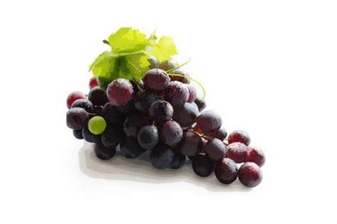 E Liquid Sunquick Grape Fresh Liquid grape ejuice new orleans electronic cigarettes ejuice