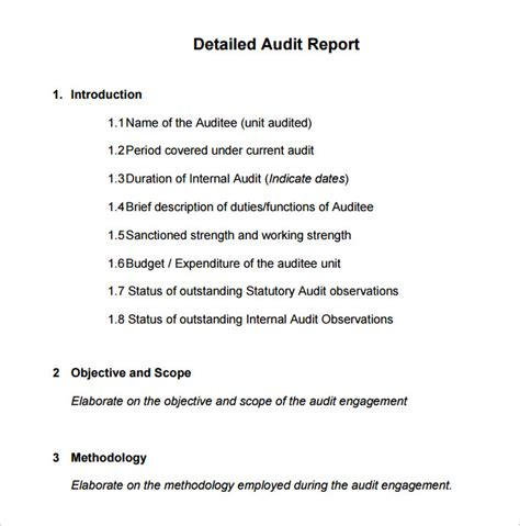 External Audit Report Template