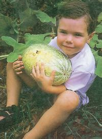Rnzih Horticulture Pages Book Review Organic Organic Vegetable Gardening Mcfarlane
