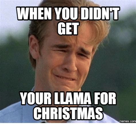 Pictures For Memes - when you didnt get your llama for christmas llama meme