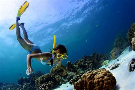 best snorkeling maldives image gallery maldives snorkeling