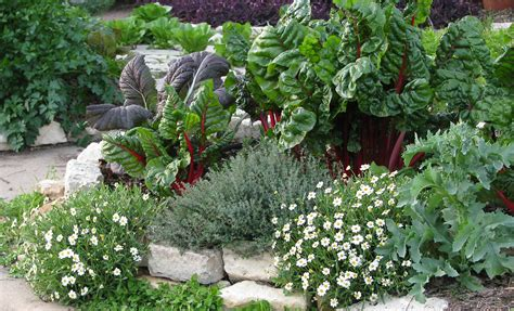 Edible Garden Flowers Eat Your Yard How To Design An Edible Landscape Nature Ridge Homes