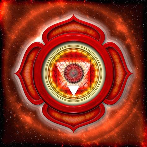 root chakra your root chakra and how to activate its power