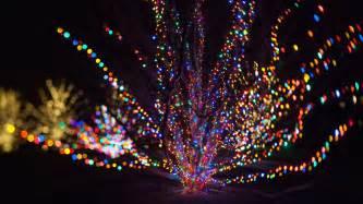 best christmas lights near me lizardmedia co
