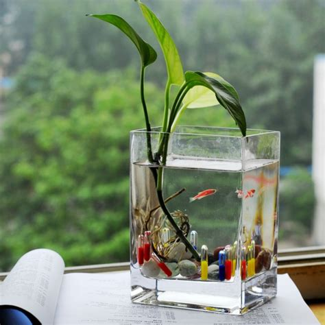 plante verte pour chambre lе vase en verre un joli d 233 de la d 233 co