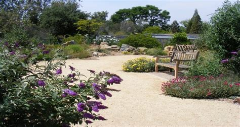 Uc Riverside Botanic Gardens The 50 Most Beautiful College Arboretums Best College Reviews