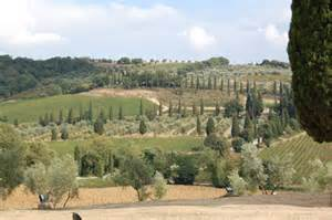 best tuscan wines best tuscan wines beyond tignanello do bianchi