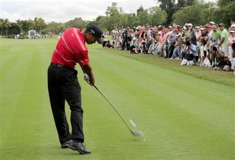 tiger woods perfect swing golf swing speed consistency is key golf swing tips