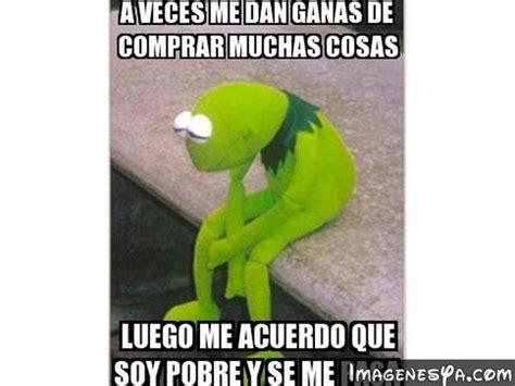 imagenes memes rana rene imagenes para ping groseras imagui