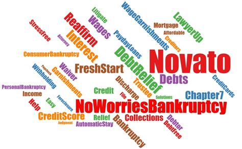 novato bankruptcy attorney 100 to start call us now