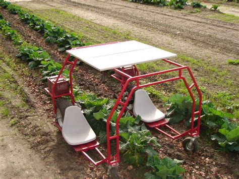 Diy Garden Cart by This For You Diy Garden Cart Plans