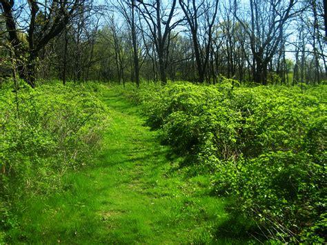 Rockhton Botanic Gardens Elevation Of W Tucker Dr Beloit Wi Usa Maplogs