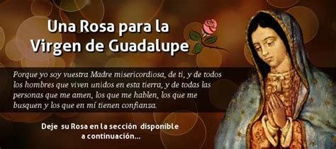 imagen de la virgen de guadalupe que esta en la basilica peticiones una rosa para guadalupe 2017 2018 salve