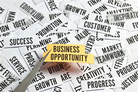 time  buy  business opportunity