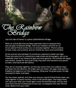 Dog Loss Poem Rainbow Bridge