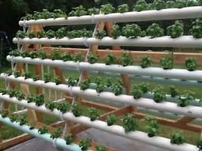 Indoor Hydroponic Gardening Kit - c 243 mo crear un sistema hidrop 243 nico casero con 168 plantas