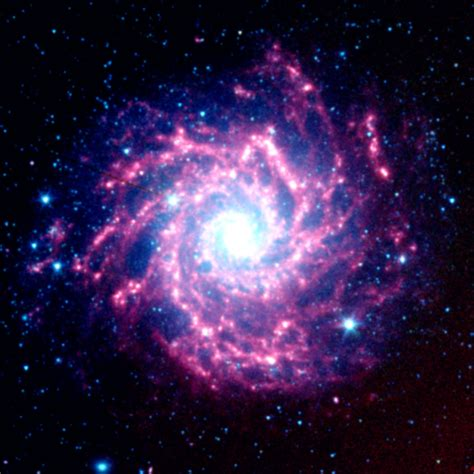 nasa space pictures file nasa s spitzer space telescope view of m74 jpg