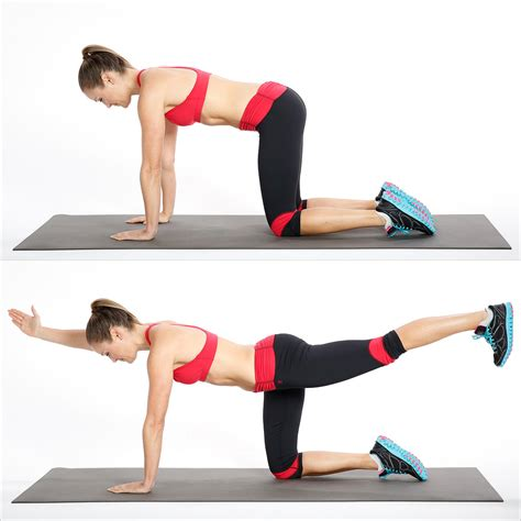 bird dogs workout how to do bird exercise for your back popsugar fitness