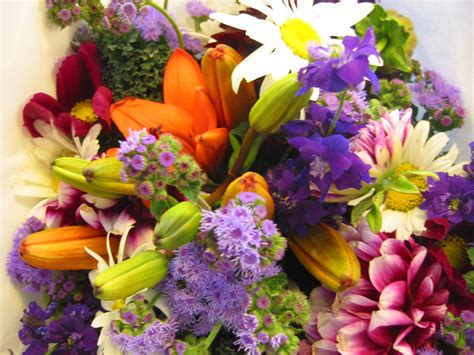 Fresh Flowers by Summer Flower Fresh Flowers
