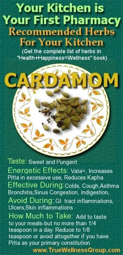 Cardamom Based Home Remedies by Remedies Herbs In Your Kitchen Cardamom Colds