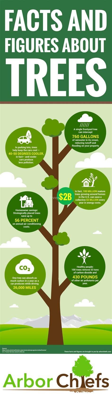 top 28 tree facts 7 weird facts about trees reader s