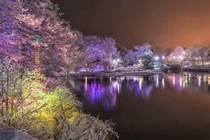 johns island lights bowring park winter photograph by follett