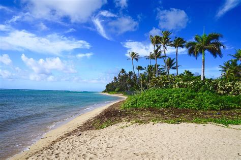 best in honolulu the 8 best beaches in honolulu to visit this summer