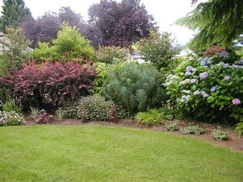 shrub garden design ideas garden design shrubs search garden ideas