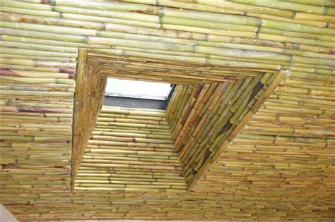 bamboo ceiling tiles bamboo ceiling thatchscapes