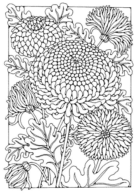 chrysanthemum paper pinterest