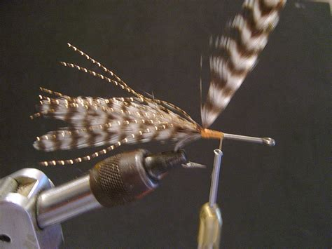 Tying During Section by Tips Tactics Tying Paul S Seaducer Fly Magazine
