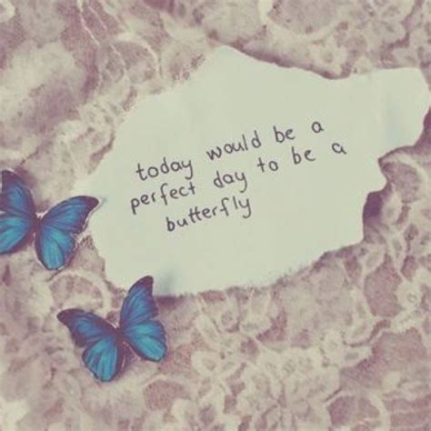 butterfly sayings butterfly fly away quotes quotesgram