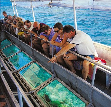 glass bottom boat tours marathon fl glasbodenboot nabq tours